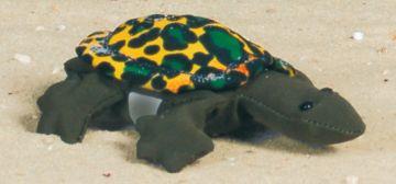 Sandtier - Schildkröte