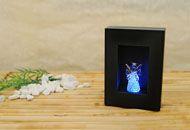 LED-Leuchtrahmen, klein, mit Glas-Engel