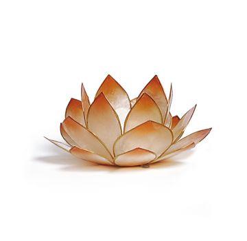 Lotus-Licht Sonnenaufgang mandarin
