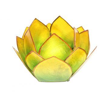 Lotus-Licht Abendsonne grün-gelb