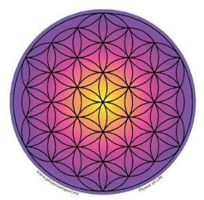 Fensterbild Blume des Lebens violett